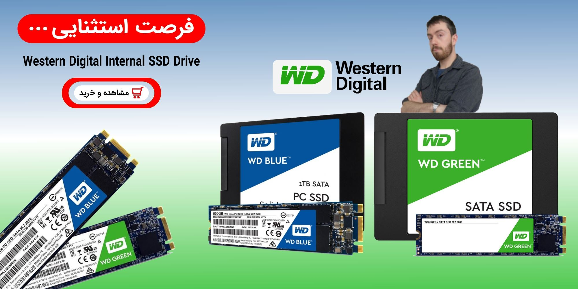 Western Digital Internal SSD Drive